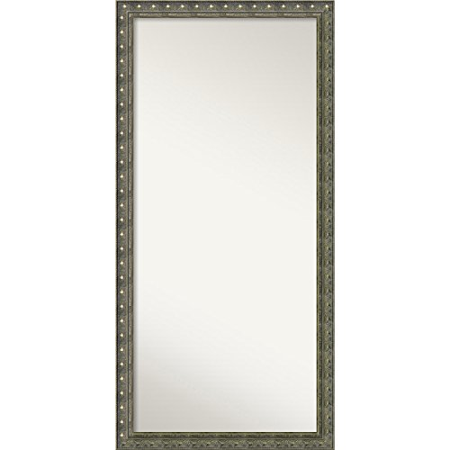 Amanti Art Wall Mirror, Choose Your Custom Oversized, Barcelona Champagne Wood: Outer -
