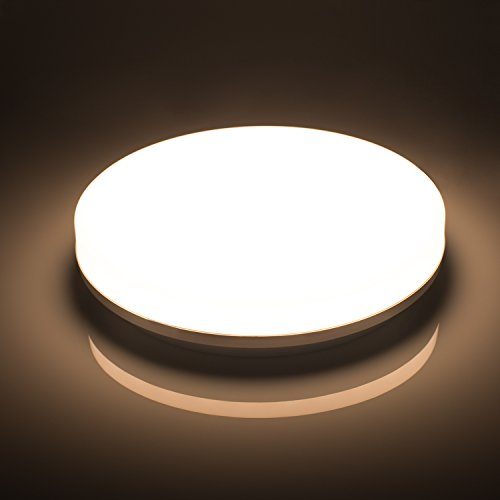 LED Ceiling Light, Airand Ceiling Lamp Flush Mount