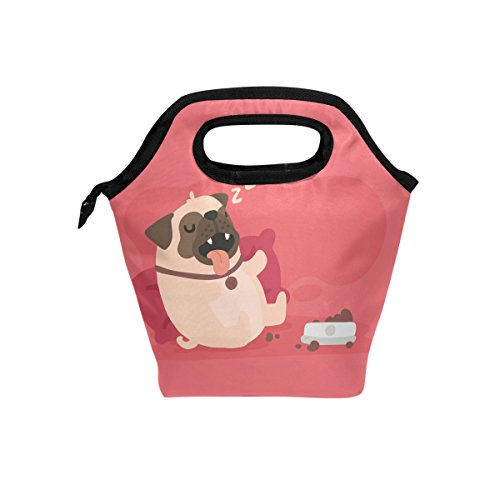 Blue Viper Cute Pug Sleeping With Flat Insulated Lunch Bag Tote Handbag Portable Lunchbox Food Container Gourmet Tote Cooler Warm Pouch for School Work Office
