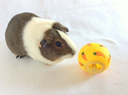 WHEEKY-Treat-Ball-for-Guinea-Pigs-and-Other-Small-Pets-Yellow-Adjustable-Opening-Snack-Ball
