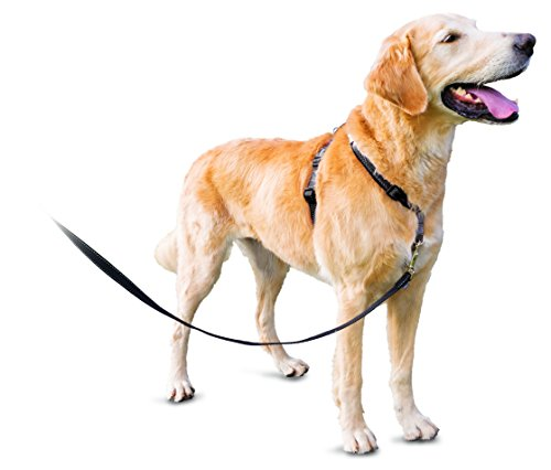 PetSafe 3in1 Harness, from The Makers of The Easy Walk Harness, Fully Adjustable No-Pull Dog - Harness Dog Shoulder