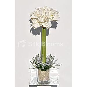 Tall & Bright White Amaryllis & Heather Floral Arrangement 79