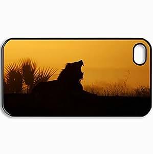 Personalized Protective Hardshell Back Hardcover For iPhone 4/4S, Hedgehog Spines Blurring Design In Black Case Color