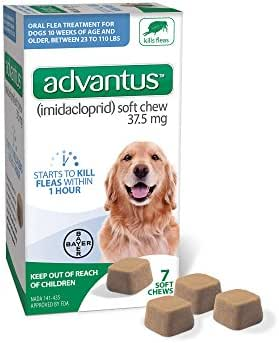 Dog Medication & Health Supplies: Bayer Advantus