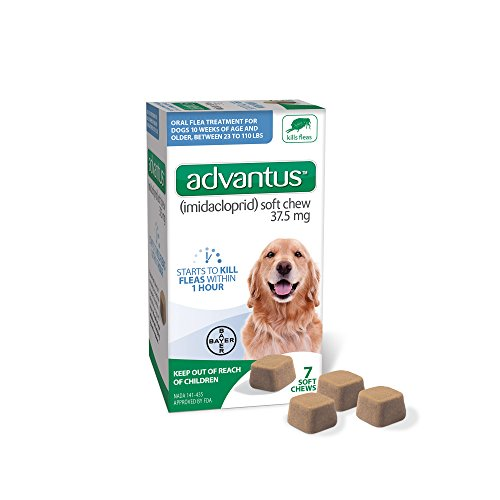 Bayer Advantus, Large Dogs 23-110 lbs, Soft Chew Flea Treatment, Savory Meat Flavored, Same-As-Vet, 7 Daily doses (Spray To Get Rid Of Ticks In Yard)