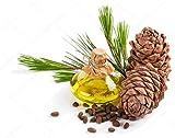 Brain Health Memory and Focus - Pine BARK Extract