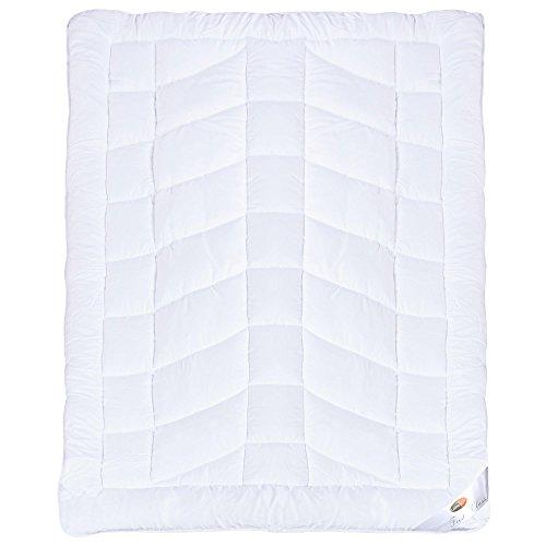First Class Bettdecke | weitere Decken und Größen wählbar | Ganzjahres-Steppdecke Mikrofaser 135 x 200 cm CelinaTex 0001636