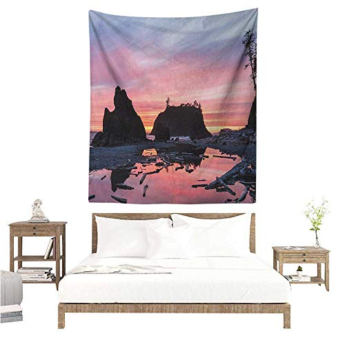 Willsd National Parks Decorative Tapestry Sunrise in Slow Moving Stream Pinky Soft Colored Misty Skyline Mystic Beach Tapestry for Home Decor 51W x 60L INCH -