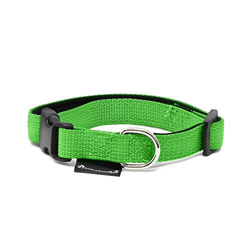 All Pet Solutions Dog Puppy Soft Padded Durable Strong Adjustable Collar, Small, Green