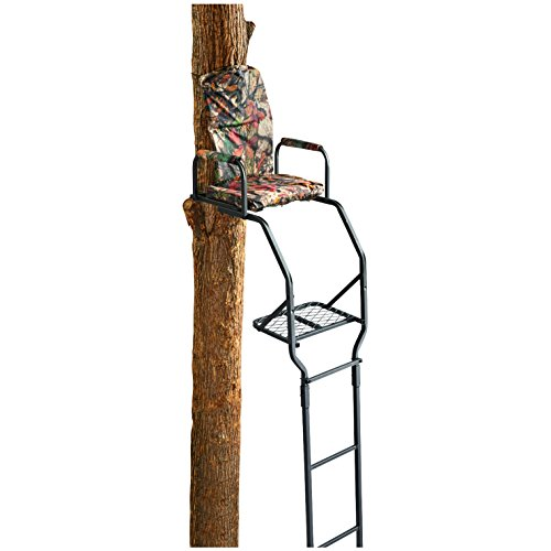 Guide Gear 16' Basic Ladder Tree Stand