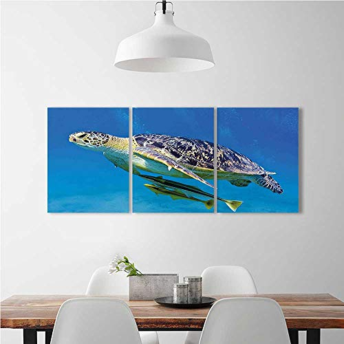 Cheap  aolankaili 3 Pieces Modern Wall Art Decor Frameless Angry Looking Sea Swimming..