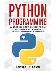 Best python book for intermediate programmers