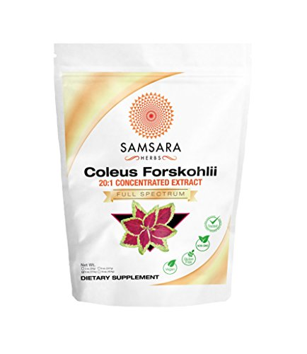 Coleus Forskohlii Root Extract Powder (4oz/114g) 20:1 Concentration – Non – GMO, Weight Loss, Respiratory, Energy, Circulation, Digestion