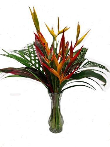 amazon com get well hawaiian tropical flower arrangement
