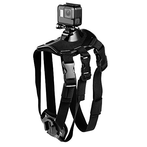 gopro hero3 dog harness - 1