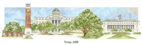 Texas A&m Acrylic (Texas A&M University - Collegiate Sculptured Ornament)