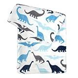 Tadpoles Ultra-Soft Microfleece Plush Dinosaur Baby Blanket, 30x40, Blue/Grey