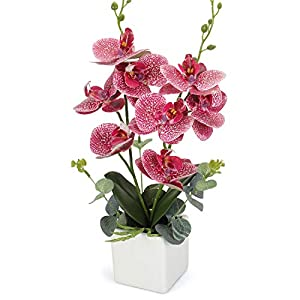 RERXN Artificial Orchid Bonsai Fake Orchid Arrangement 3 Heads PU Potted Phalaenopsis Plant for Home Party Decor 11