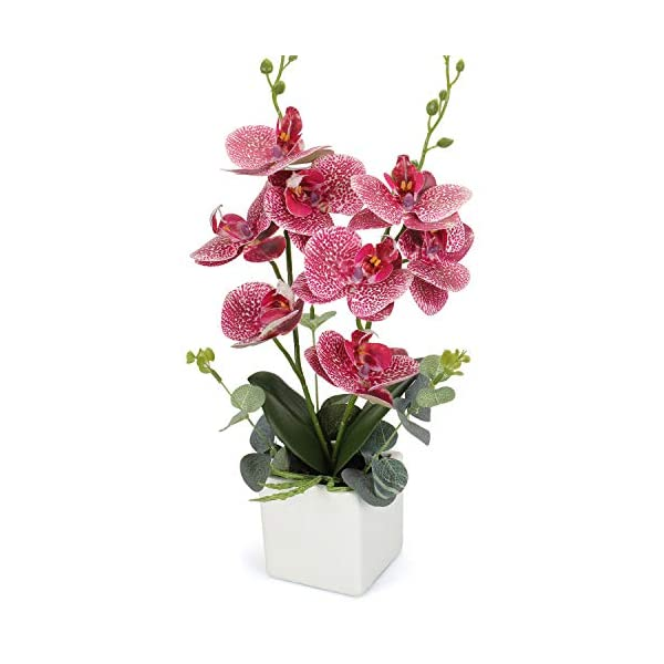 RERXN-Artificial-Orchid-Bonsai-Fake-Orchid-Arrangement-3-Heads-PU-Potted-Phalaenopsis-Plant-for-Home-Party-Decor