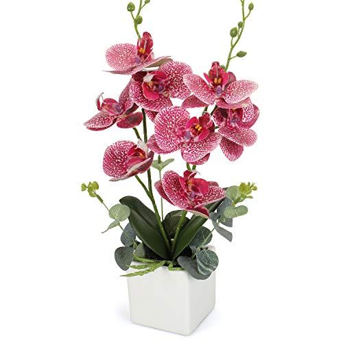 Potted Phalaenopsis Orchid - RERXN Artificial Orchid Bonsai Fake Orchid Arrangement 3 Heads PU Potted Phalaenopsis Plant for Home Party Decor