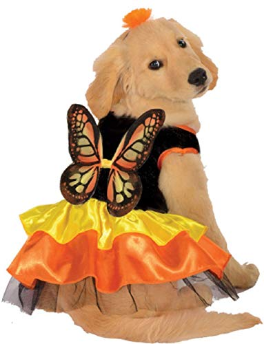Deluxe Beautiful Butterfly Monarch Butterfly Pet Dog Size XL Costume ()