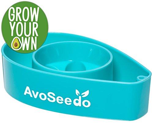 AvoSeedo-Plastic-Bowl-Evergreen