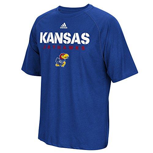 adidas NCAA Kansas Jayhawks Adult Men 2017 Spring Game Sideline S/Climalite Tee,Large,Collegiate Royal