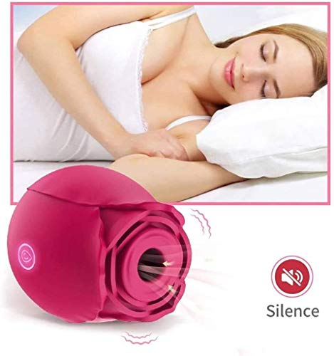 2021 New Upgraded Women Rose Toys with 10 Gears, Rechargeable Rose Flower  Toy for Women (Rose) – Asilikeyou Direct