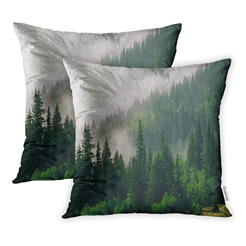 - Emvency 18x18 Inch Decorative Set of 2 Throw Pillow Cover Mountains Morning Fog in San Juan National Forest Range Colorado Evergreen Square Home Cushion Sofa Two Sides Pillow Case