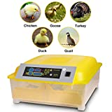 Currens Incubators for Hatching Chicken Duck Goose Quail Fertilized Eggs with Automatic Egg Turning,Temperature & Control 80W US Plug (48 Egg Incubator) [US Stock]