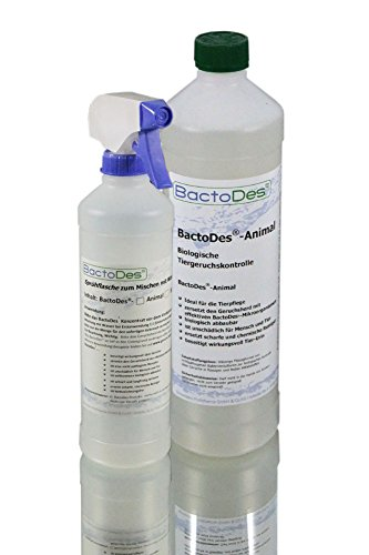 BactoDes Animal -1 Liter Geruchsentferner, Geruchskiller-Konzentrat zum Verdünnen (mind. 2L Gebrauchslösung) - inkl. Mischflasche - beseitigt Tieruringeruch, Katzenuringeruch, Tiergeruch, Katzenurin, Hundeurin, Kleintiergeruch, dauerhaft - ein echter Geruchsvernichter für die dauerhafte Geruchsbeseitigung