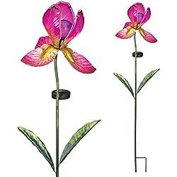 Regal Art & Gift Solar Iris Stake, Fuchsia