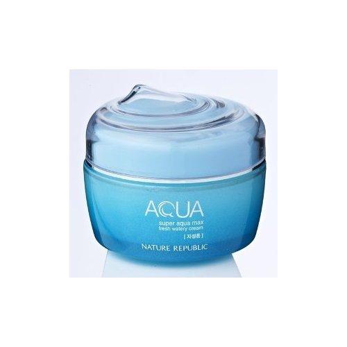Nature Republic Super Aqua Max Fresh Watery Cream_80ml_for oily skin type