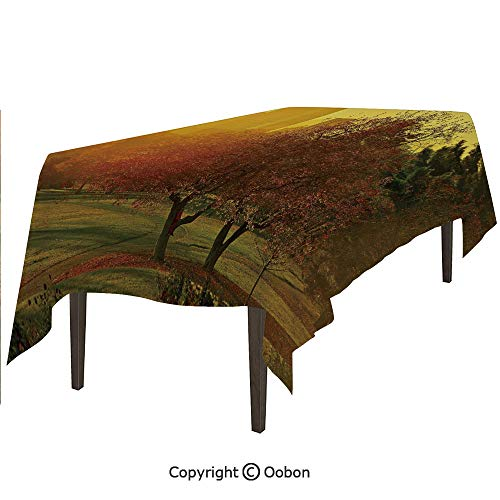 oobon Space Decorations Tablecloth, Sunset Over The City Park Colorado Skyline Autumn Theme Scenic Picture, Rectangular Table Cover for Dining Room Kitchen, W60xL84 inch ()