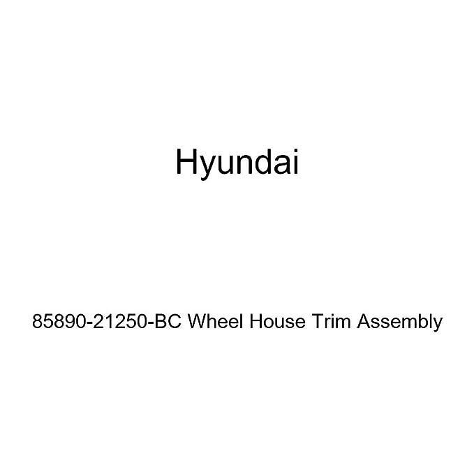 Genuine Hyundai 85890-21250-BC Wheel House Trim Assembly