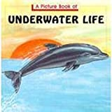 A Picture Book of Underwater Life, Theresa Grace, 0816719071