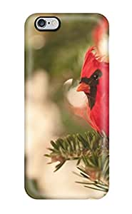 Top Quality Case Cover For Iphone 6 Plus Case With Nice Cardinal Appearance