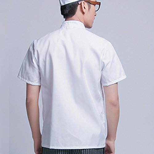 Modern Classic Zhhlinyuan Sleeve Unisex Uniform Chef Short Clothes White Work qdfd4