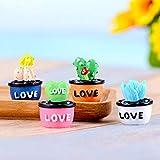 Culturemart Miniature Resin Cactus Flower Pot Micro