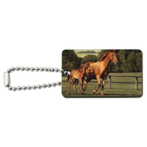 Mother Horse and Foal Baby Fresh Start Wood Wooden Rectangle Keychain Key Ring ()