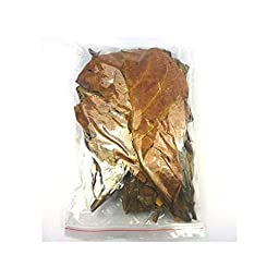SunGrow Betta Leaves 50pcs 10~25cm Natural Terminalia Catappa Leaves Shrimp -Fish Improve Water Quality Tank