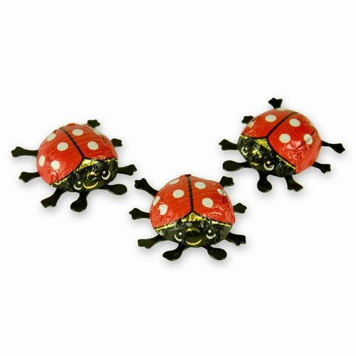 Riegelein Mini Chocolate Ladybugs 12.5g (10-pack)