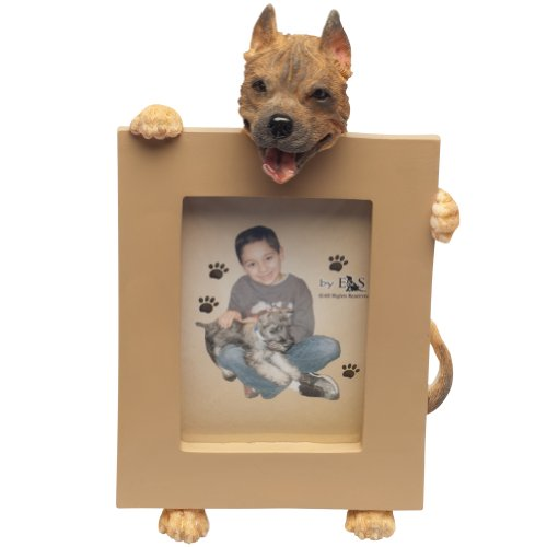 (Pit Bull, Cropped Picture Frame Holds Your Favorite 2.5 by 3.5 Inch Photo, Hand Painted Realistic Looking Pit Bull Stands 6 Inches Tall Holding Beautifully Crafted Frame, Unique and Special Pit Bull Gifts for Pit Bull Owners)