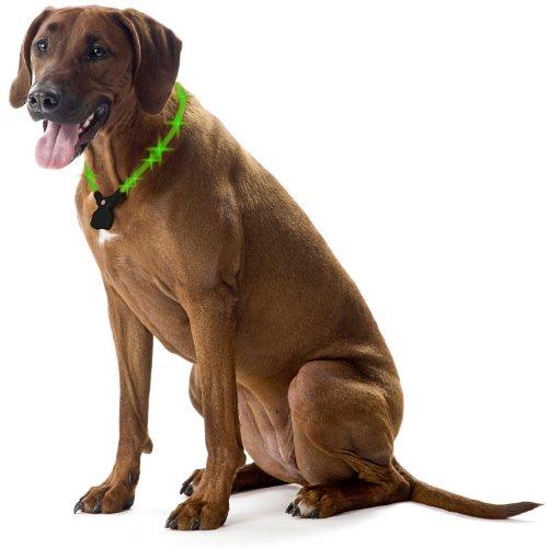 Wolters Hunde Leuchthalsband Leuchtring Nightshift Hundehalsband Größe: S bis XL, grün