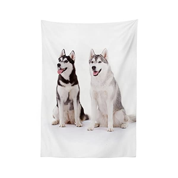 "Ambesonne Alaskan Malamute Tablecloth, Furry Arctic Doggies Husky Whelp Pedigree Pet Happy Siberian Mammal, Dining Room Kitchen Rectangular Table Cover, 52"" X 70"", White Brown 2"