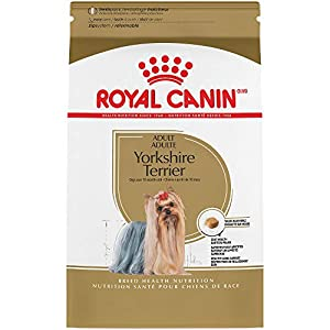 Royal Canin Breed Health Nutrition Yorkshire Terrier Adult Dry Dog Food, 2.5-Pound