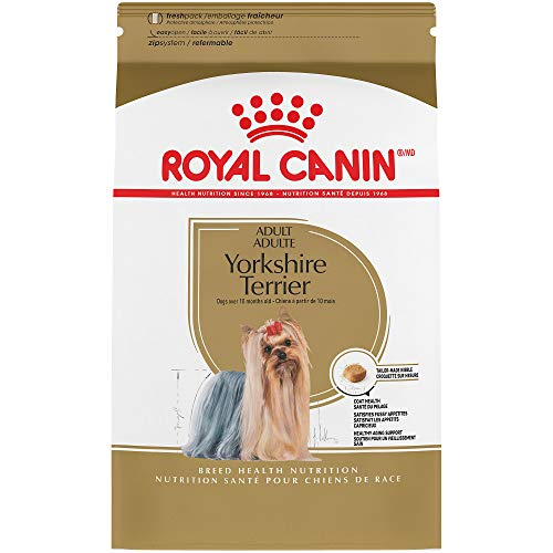 - Royal Canin Breed Health Nutrition Yorkshire Terrier Adult Dry Dog Food, 10-Pound