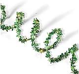 Everlasting Glow 44239 10' Green Boxwood LED Garland Christmas 4.3InL x 4.33InW x 6InH
