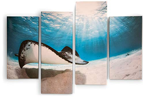 Gravy Goods Stingray 4 Piece Canvas Wall Art, Tropical Fish Underwater Ocean Picture Decor