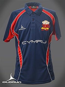 Camisa Olorun de Gales para seguidores de rugby, polo S a XXXXL ...